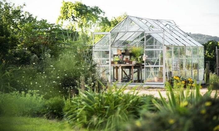Dôvody, prečo je skleník ideálna voľba do vašej záhrady